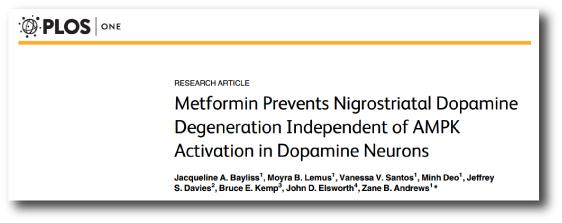 Metformin