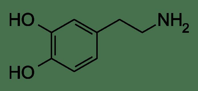 Image result for dopamine