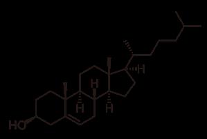 cholesterol-svg