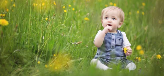baby-spring