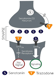 Trazodo or Trazodon't? | The Science of Parkinson's